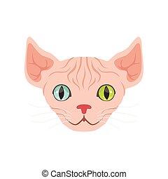 Lindo gato esfinge con ojos de diferentes colores, divertido dibujo animado ilustración de vector de caracter de animal