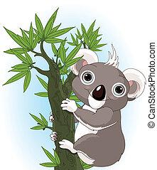 Lindo koala en un árbol