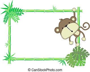 Lindo marco de mono bebé