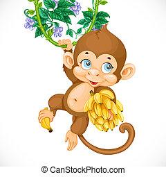 Lindo mono bebé con plátano aislado en un fondo blanco