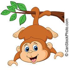 Lindo mono colgado de un branc