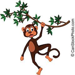 Lindo mono en un árbol