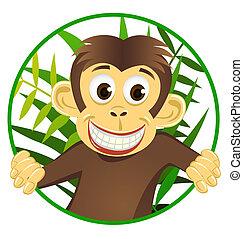 Lindo mono