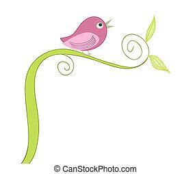 Lindo pájaro cantando