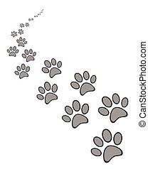 lindo, pata, perro, gato, impresión, o