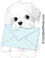 Lindo perro entregando sobres de correo