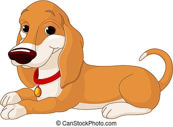 Lindo perro mentiroso