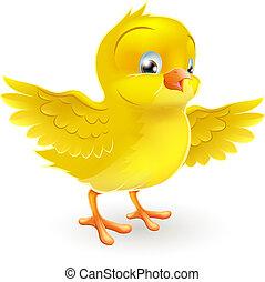 lindo, poco, feliz, polluelo amarillo