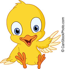 lindo, polluelo