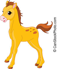 Lindo potro de caballo