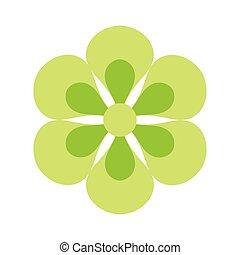 lindo, verde blanco, estilo, mexicano, flor, plano de fondo