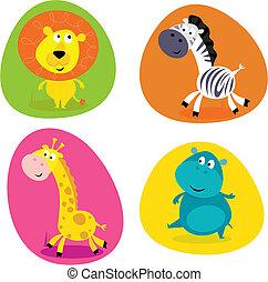 Lindos animales de safari preparados - león...
