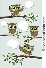 Lindos búhos vector de red social