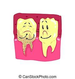 Lindos dibujos animados sanos y podridos personajes de dientes con caras graciosas vector de ilustración