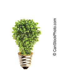 Linterna ecológica