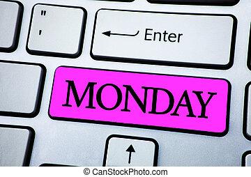 llave, texto, semana, espalda, señal, cima, monday., blanco, actuación, fin de semana, foto, wakeup, día, teclado, vista., encima, space., trabajo, primero, temprano, conceptual, escrito, botón, copia, rosa
