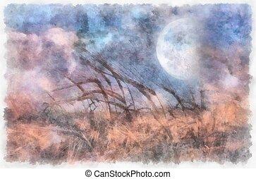 lleno, campo, luna, encima