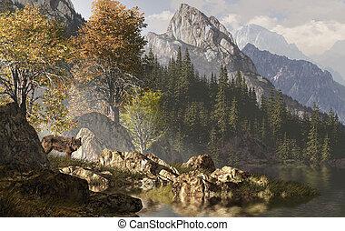 Lobo y las montañas rocosas