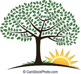 Logotipo vectorial del amanecer del árbol