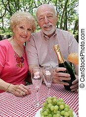 Los ancianos hacen picnic