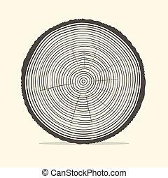 Los anillos de los árboles ilustran el vector