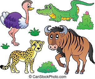 Los animales de Savannah cobran 2