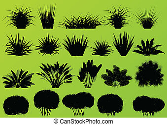 Los arbustos exóticos de la selva, la hierba, la caña, las plantas silvestres de las palmeras, las siluetas, los vectores de recogida de imágenes