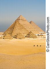 Los camellos caminan pirámides verticales
