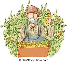 Los campos de maíz cultivan hombres