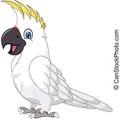 Los dibujos de Cockatoo posando