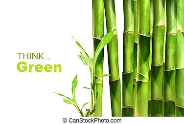 Los disparos de bambú están apilados