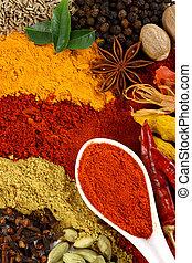 Los ingredientes de especia y sabor