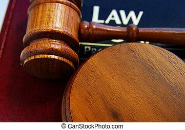 Los jueces de la corte dieron un libro de leyes, de arriba