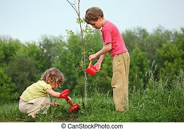 Los niños plantan el árbol