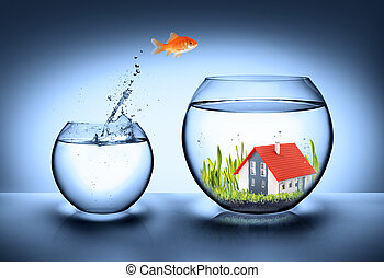 Los peces encuentran casa, bienes raíces