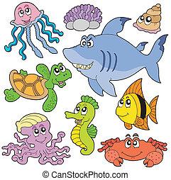 Los peces marinos y los animales recogen 2