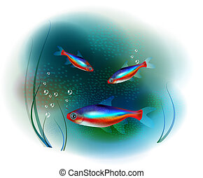 Los peces Neon en el mar