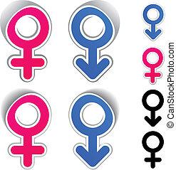Los símbolos femeninos del vector masculino