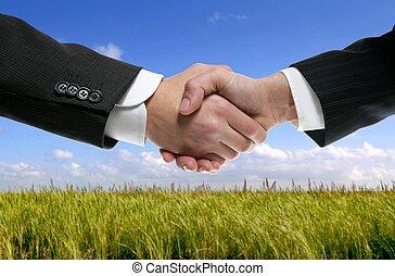 Los socios de negocios estrechan la mano en la naturaleza