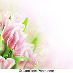 Los tulipanes diseñan la frontera