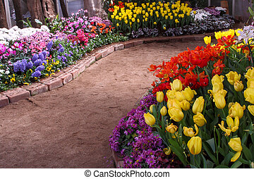 Los tulipanes son adultos y exquisitos. Parks
