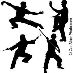 luchador, silueta, kung fu