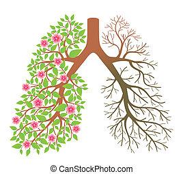 lungs., dis, después, efecto, fumar