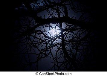 luz de la luna, fantasmal, medianoche