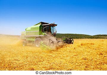 máquina segador de cosechadora, trigo, cereal, cosechar