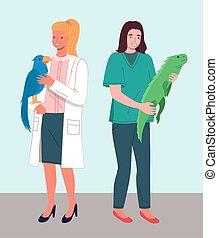médico masculino, illustration., caracteres, plano, cuidado, veterinario, veterinario, oficina, médico