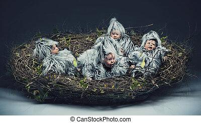 Múltiple escena de un niño pájaro en el nido