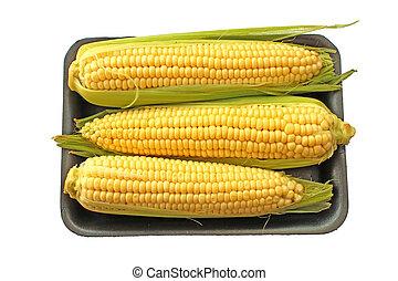 maíz, sweetcorn, mazorca