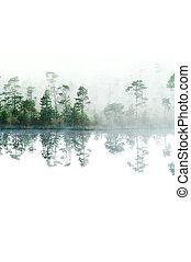 Mañana en el bosque de la taiga. Fog en la superficie del agua. Un lago tranquilo. Aislado de arriba a abajo