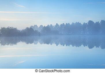 Mañana tranquila en el lago
